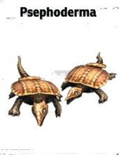 File:Jurassic-Park-Builder-Psephoderma-1-.png