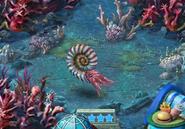Level 40 Ammonite