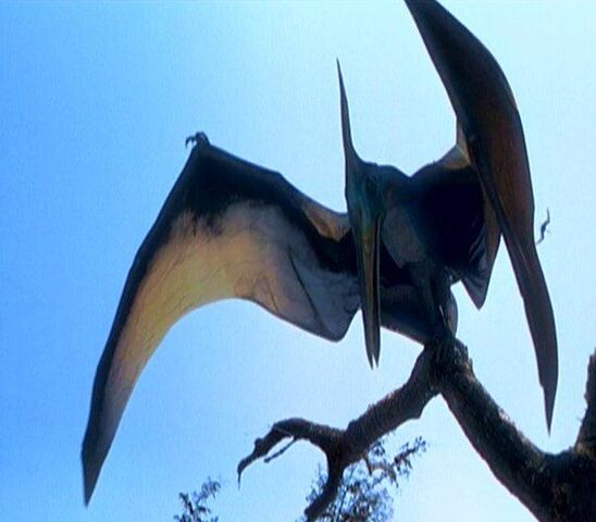 File:Pterosaur.jpg