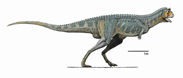 File:Carnotaurus Male at Isla Cabely.jpg