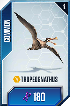 File:Tropeognathus0.png