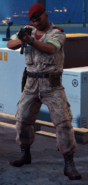 Medici Military regular soldier