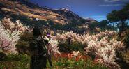Happy Bubble Blaster (pink trees)