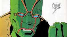 Ambush Bug Speaks