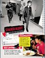 Seventeen May 2013 stalker alert
