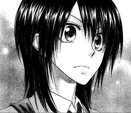File:Misaki ayuzawa manga profile.jpg