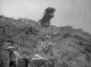 Godzilla-11