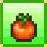 PH crop cherry tomato mini