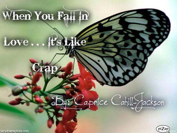 File:When You Fall In Love . . . It's Like Crap.jpg
