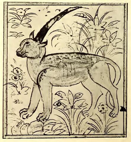 File:Shadhahvar Berlin manuscript.jpg