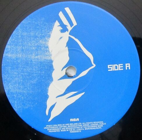 File:L.S.F. (Lost Souls Forever) 10 Vinyl Single (PARADISE15) - 2.jpg