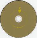 Shoot The Runner DVD Single (PARADISE46) - 3