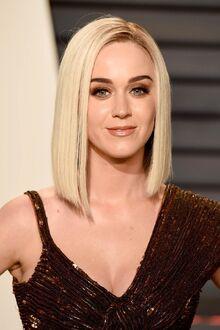 Katy Perry The Oscars 2017