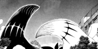Black & White Ayakashi