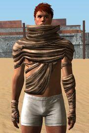 Slave Shirt