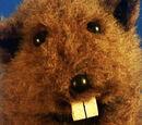 Fafa the Groundhog