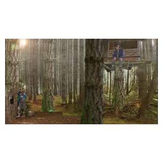 Domek na drzewie z zewnątrz. Marian wypatruje Ferdka z góry.
