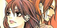 Kimi ni Todoke Manga Volume 14