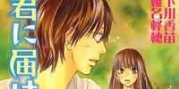Kimi ni Todoke Light Novel Volume 04