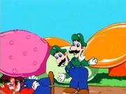 Salami Luigi