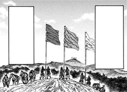 Flags portrait
