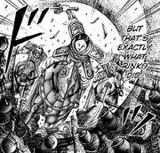 Rin Ko's Fury