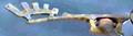 Thumbnail for version as of 17:35, November 6, 2009