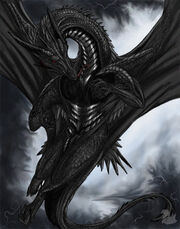 King black dragon by Midnight Lonesome