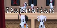 Dalmatian Nation