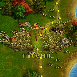 Turtle Hill