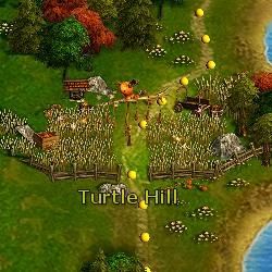 File:Turtle Hill.jpg