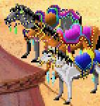 File:HorseKQ5.png