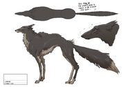 Wedzelwoodswolf