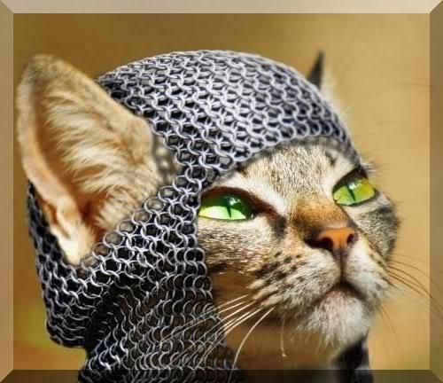 File:VikingCat-but.jpg