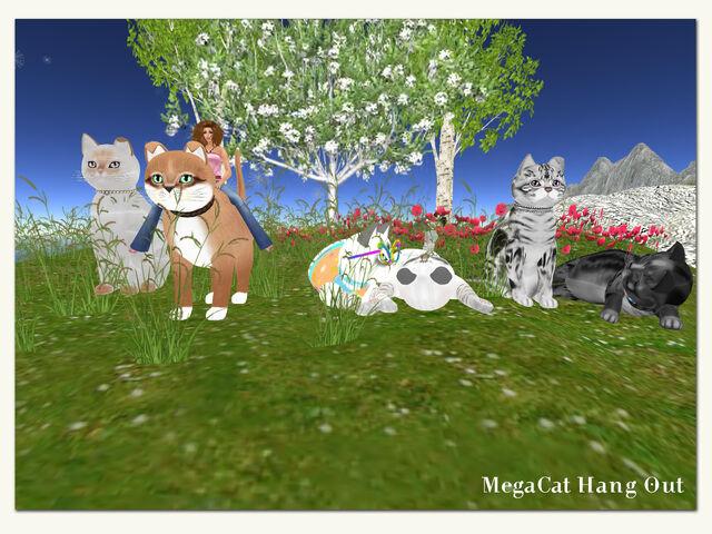 File:KittyCatS! - MegaCat Hang Out.jpg