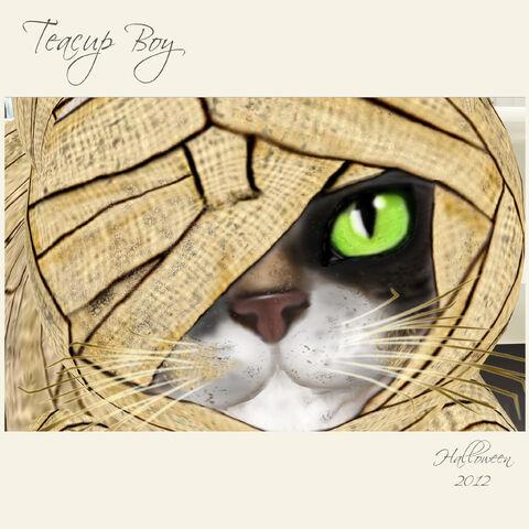 File:Mummy Mia! - Immortal - Teacup Cat.jpg