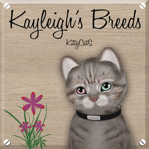 File:Kayleigh's Breeds 1024 x 1024.jpg