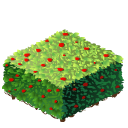 File:Hedge square last.png