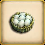 Chicken egg framed