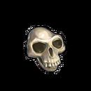 Bone yeti skull