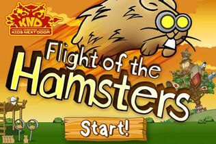 Flight-of-the-hamsters