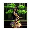 Res bonsai 1.png