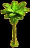 Banana tree ph3