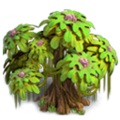Res age-old tree 2.png