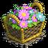 Basket pink flowers