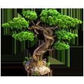 Res bonsai 2.png