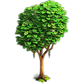 Res mellow tree 1.png