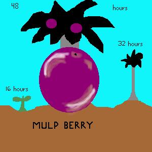 File:MulpBerryByEroshiyda.png