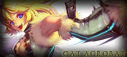 File:Cat Acrobat Banner.png