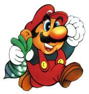 Marioveggie